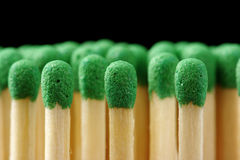 Line of green matchsticks on black background Stock Images