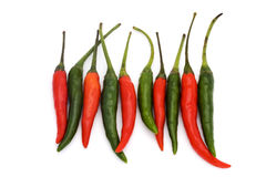 Line of green and red chillies. On a white background Stock Photography