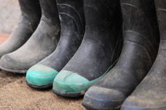 Line of gumboots. In a row, various sizes, and various condition Royalty Free Stock Photos