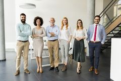 Line of happy and positive business people standing in the office stock image