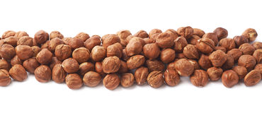 Line of hazelnuts isolated Stock Images