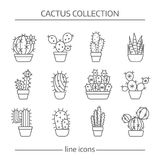 Line icons of cactus royalty free illustration