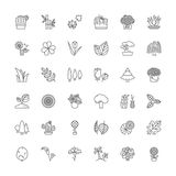 Line icons. Flowers, plants and trees Royalty Free Stock Image