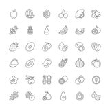 Line icons. Fruit Royalty Free Stock Image