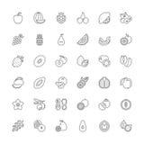 Line icons. Fruit Royalty Free Stock Image