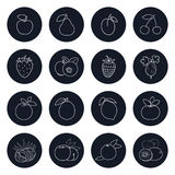 Line Icons of Fruits and Berrys stock illustration