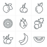 Line Icons Style  Fruit Icons Set. Royalty Free Stock Photos