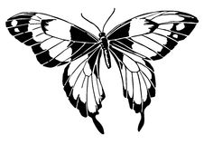 Line Illustration Of A Butterfly /Eps Royalty Free Stock Image