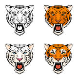 Line illustration of a roaring tiger head Royalty Free Stock Photography