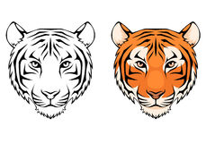 Line illustration of a tiger head Royalty Free Stock Photo