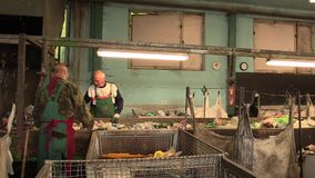 OLOMOUC, CZECH REPUBLIC, APRIL 25, 2018: Line for industrial sorting of different types of plastics waste. Poor and. Line for industrial sorting of different stock video footage