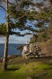 Line Kiln Lighthouse Royalty Free Stock Photos