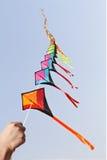 Line of kites Royalty Free Stock Photo