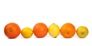 Line of lemons and oranges Royalty Free Stock Image