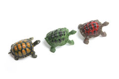 Line of Miniature Tortoises Royalty Free Stock Images