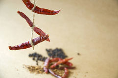 Line Of Dried Chili Hanging Stock Photos
