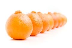 Line of oranges. On white Stock Photo