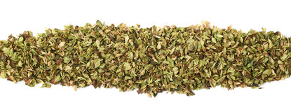Line of oregano seasoning isolated Stock Images
