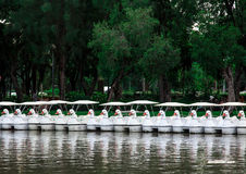 Line of paddle boat shaped duck in the park Stock Photo