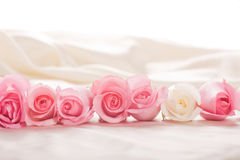 Line of pink and white roses laying in silk backgr Stock Photography
