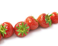 Line of red strawberries  Stock Photography