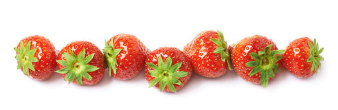 Line of red strawberries  Stock Photo