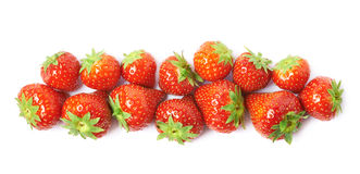 Line of red strawberries  Royalty Free Stock Photography