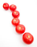A Line of Ripe Tomatoes Royalty Free Stock Photos