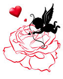 Line of rose and cupid vector card designs for valentine day Royalty Free Stock Photo