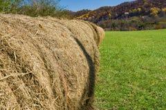 Line of Round Hay Bales Stock Photos