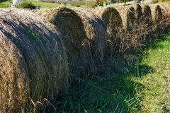Line of Round Hay Bales Royalty Free Stock Photos