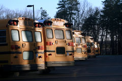 Line of School Buses. Back view of a row of parked school buses in the early morning hours Stock Photo
