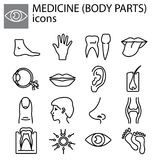 Line set. Medicine body parts. Web line set. Medicine body parts Stock Photo