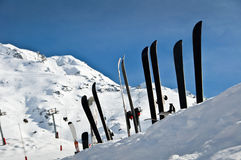 Line of skis in the snow Royalty Free Stock Photography