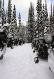 Line of snowmobile. In the forest Royalty Free Stock Photography