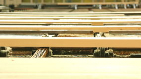 Line sort of boards stock video