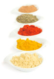 Line of spices on white Royalty Free Stock Photography