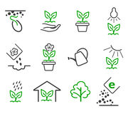 Line sprout and plant growing vector icons set. Line sprout and plant growing icons set. Linear nature leaf, grow tree, garden and flower, organic gardening, eco Royalty Free Stock Image
