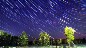 Line stars in the forest. Time Lapse. 4K stock video footage
