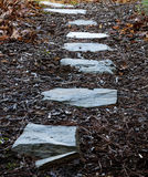 Line Of Stepping Stones Admidst Bark Leaves Royalty Free Stock Photos