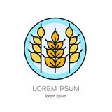 Line style logo with wheat golden spikes. Stock Photos