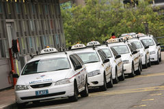 Line of taxi cabs in sydney, australia. Line of white taxi cabs in Sydney, Australia Royalty Free Stock Photo