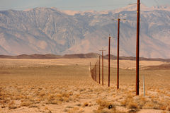 Line of telegraph poles across the desert Stock Image