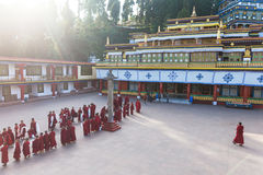 Line of Tibetan monks in front of Rumtek Monastery for welcoming high level monk near Gangtok. Sikkim, India. Stock Photos