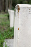 Line of tombstones with moss. Royalty Free Stock Images