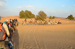 Line of Tourists Riding Dromedaries through Sahara Great Desert in High Atlas Mountains, Morocco. A Line of Tourists Riding Dromedaries through Sahara Great Royalty Free Stock Photo