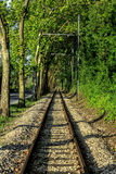 Line. Train and green hood royalty free stock image
