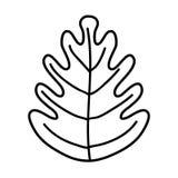 Line tropical leaf botany nature style. Vector illustration vector illustration