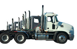 Line of trucks. Isolated in white Stock Photography