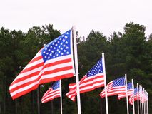 Line of United States Flags Waving in The Wind royalty free stock photography